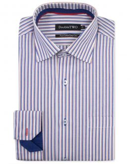 Navy Edged Stripe Formal Shirt